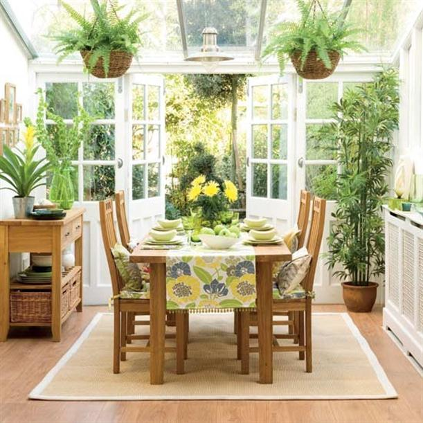 favorite things indoor plants lush to blush. Black Bedroom Furniture Sets. Home Design Ideas