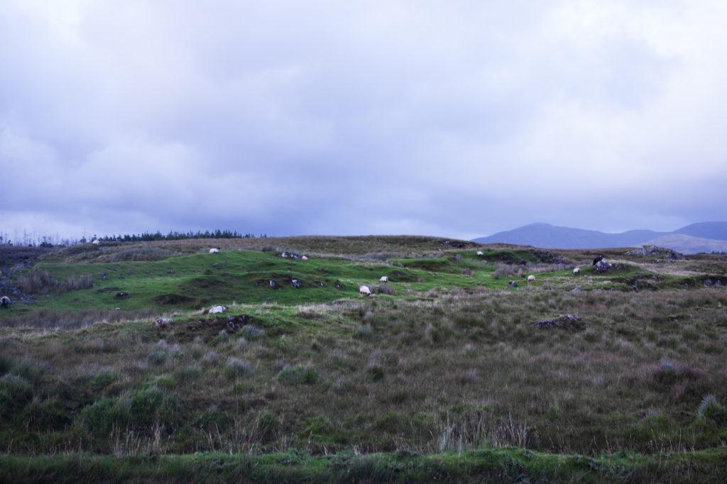 connemara, kylemore abbey, western ireland, what to do in galway, what to do in ireland, what to wear in ireland, layered sweater, castles in ireland, connemara beaches, beaches in ireland