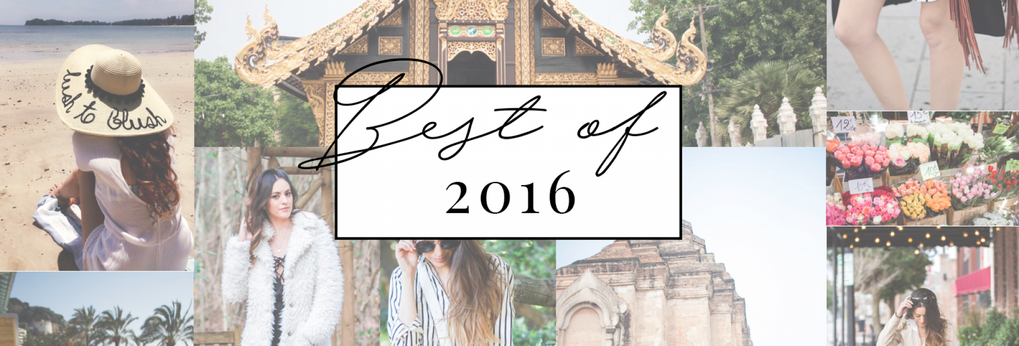 best of 2016, reader feedback survey