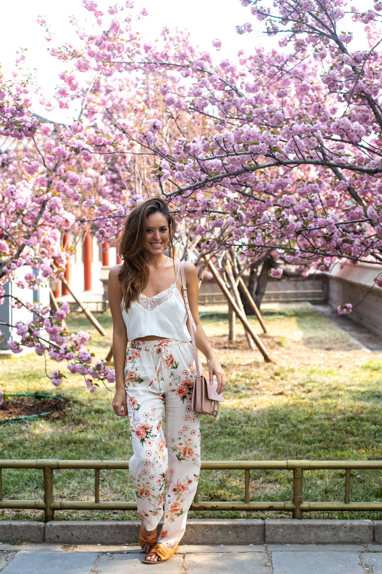 cherry blossoms in china lush to blush