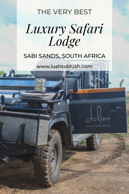 Where to stay while on an African Safari? Luxury travel & lifestyle blogger, Megan Elliot at Lush to Blush shares her stay at The Best Luxury Safari Lodge in Sabi Sands!